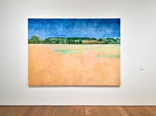 "Jean-Marie Biwer, ""Before the Flood"", 2016–2018, Collection Mudam Luxembourg. Vue de l'exposition ""Jean-Marie Biwer. D'après nature"", Mudam Luxembourg, 06.03 – 30.08.2020"