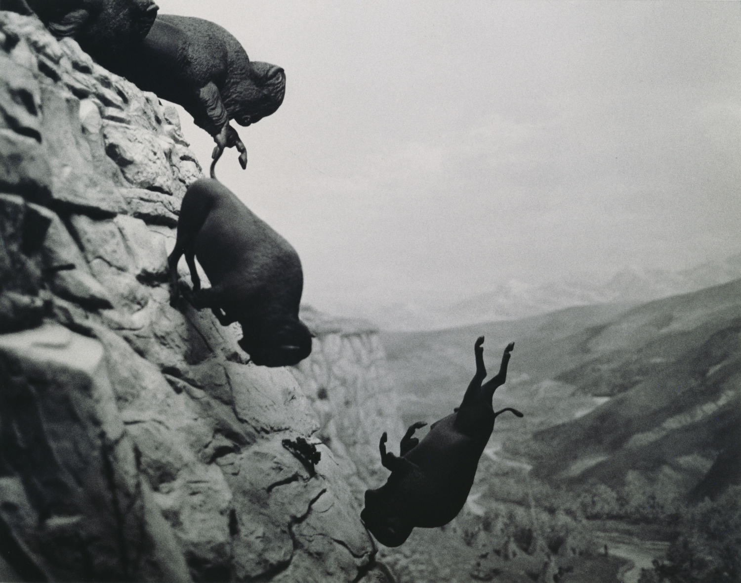 """David Wojnarowicz, """"Untitled"""", 1988–89. Collection of Steven Johnson and Walter Sudol. Courtesy Second Ward Foundation"""
